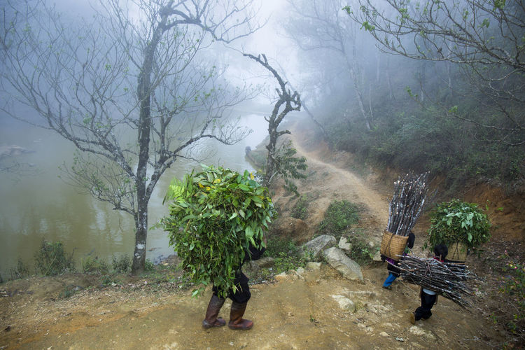 Those who collect firewood on the mountain HeritageVillage Life Market Mountain Mountain Village Life Spring Travel Photography Vietnamphotography