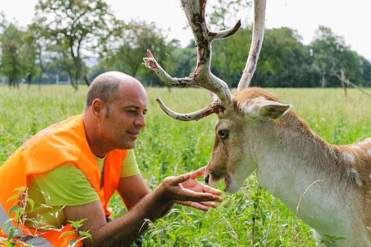 Man Playing With Deer On Field