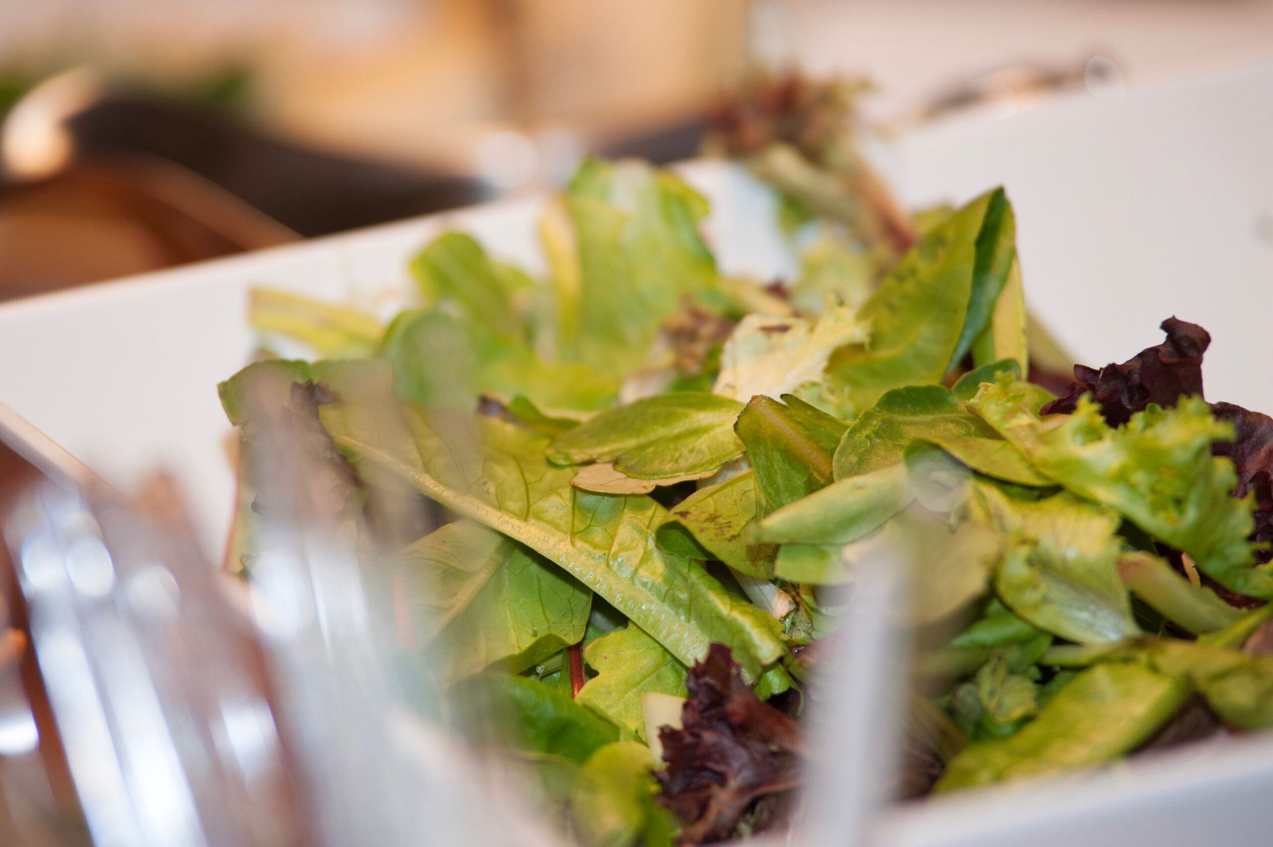 food and drink, food, green color, plate, selective focus, healthy eating, no people, close-up, table, freshness, indoors, vegetable, ready-to-eat, leaf, day