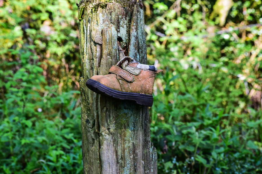 Anyone lose a shoe? Check This Out Taking Photos Nature_perfection The Great Outdoors With Adobe Nature Shoes NIKON D5300 EyeEm Best Shots - Nature EyeEm Nature Lover Stoke-on-Trent England🇬🇧 The Great Outdoors - 2016 EyeEm Awards From My Point Of View Out And About. Eye4photography  EyeEm Best Shots Life Though The Lens Telling Stories Differently No People Cheese!