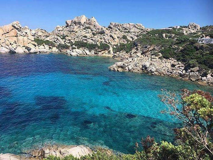Water Tree Clear Sky Sea Blue Beach Mountain Rock - Object Sunny Sky