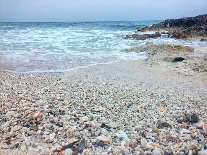 Beach Rocky Coast Rocky Ocean Coast Line  Mexico Cozumel Water Shells Perspectice Floor Beach Floor Surf's Up