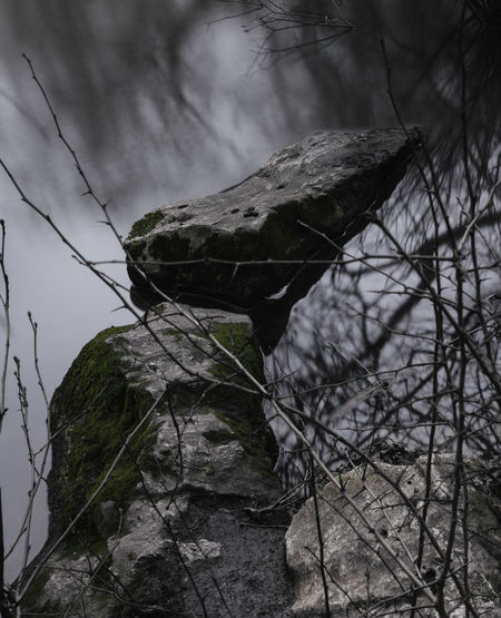 Close-up of rock on land against sky