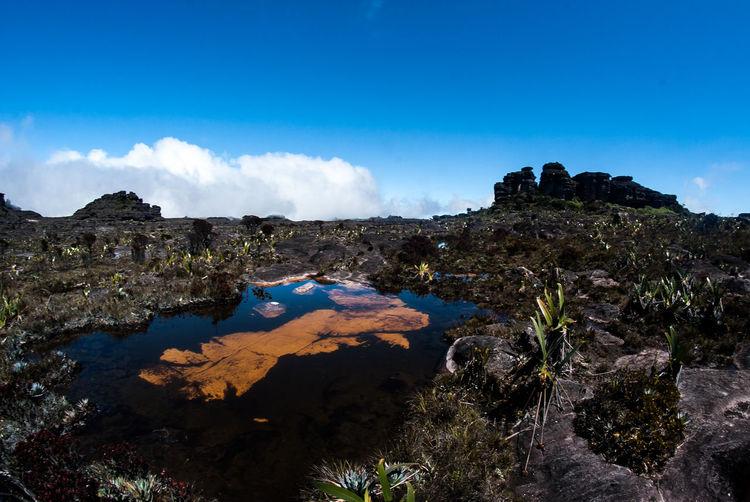 Roraima❤️ Protecting Where We Play Roraima Venezuela Trekking