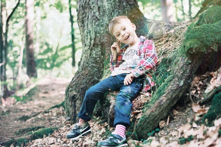Boy Kids Having Fun Forestwalk Forest Child Childhood Tree Full Length Offspring One Person Forest Casual Clothing Leisure Activity Sitting Nature Looking Lifestyles Outdoors