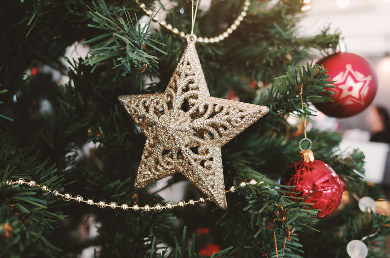 Christmas Christmas Decoration Celebration Holiday christmas tree Decoration Christmas Ornament Tree Celebration Event Ornament Close-up Star Shape Holiday - Event Tree Topper Focus On Foreground Shape Red Indoors  Hanging No People Fir Tree