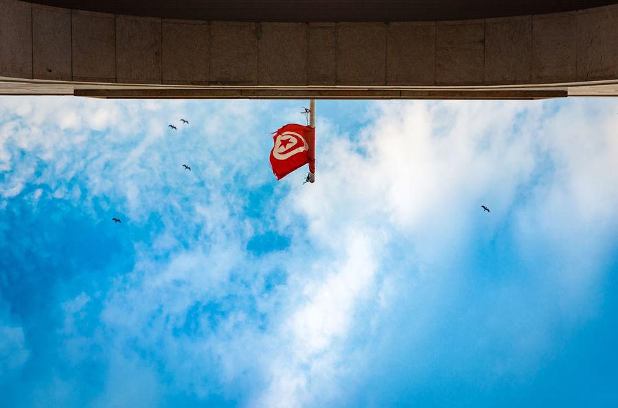 My flag Arch Birds Cloud Minimalism Minimalist Minimalist Architecture Sky Sky And Clouds Tunisia Flag Tunisian Flag