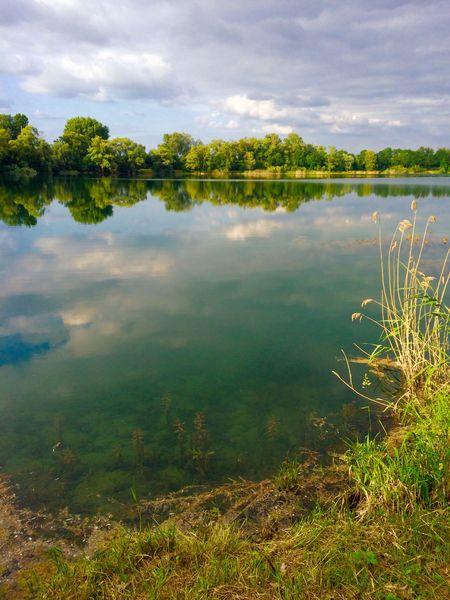 Brühl💫 Brühlersee Water Reflections Water_collection Natur Nature Nature_collection EyeEm Nature Lover EyeEm Best Shots - Nature
