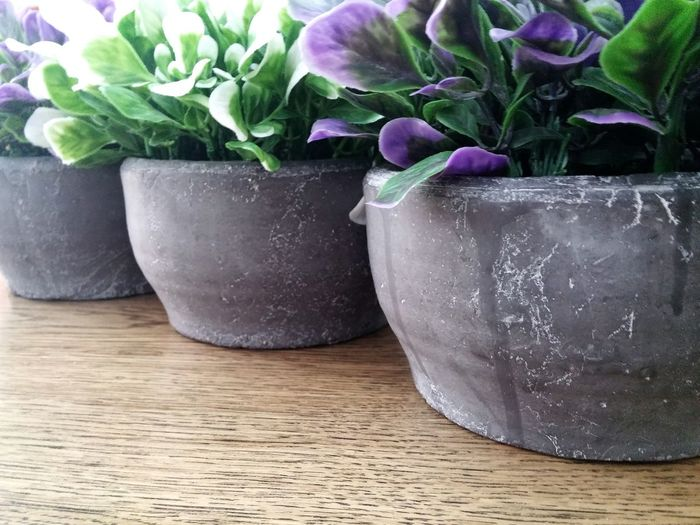 three stone vases with purple and with leaves. Hanging Out Check This Out Taking Photos Gardening Plants Green Leafs Purpel Leafs Vase Wooden Table Stone Vase