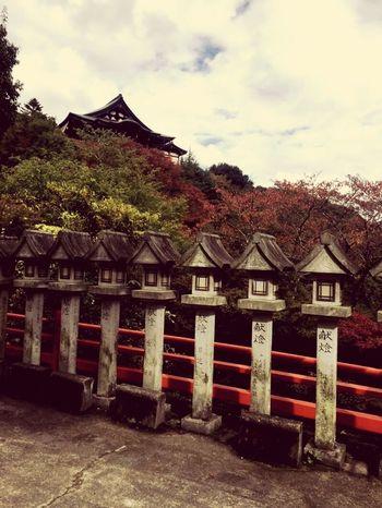 Last Year Pic Temple 奈良 朝護孫子寺 秋 Autumn Nara,Japan