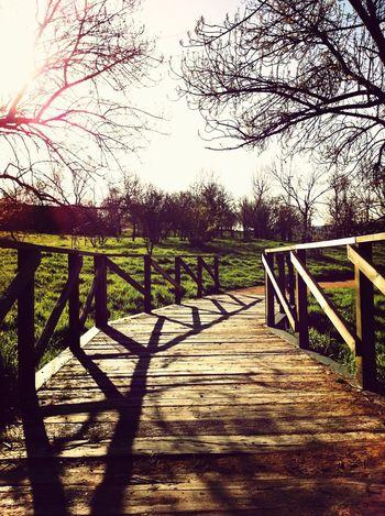 Taking Photos Spring The Minimals (less Edit Juxt Photography) AMPt_community