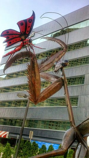 Statue Art Copper Art Insects  Praying Mantis Butterfly Larger Than Life Artprize Grand Rapids, MI Pure Michigan Downtown Places I've Been Unique Interesting Check This Out Mobilephotography Motorolaphotography Popular Photos