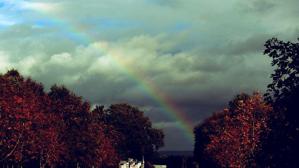 Rainbow Nature_perfection Landscape #Nature #photography