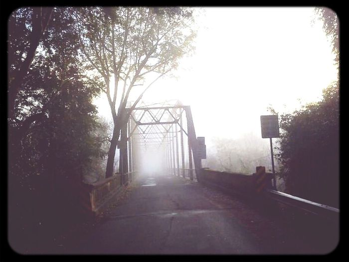 Bridge Foggy Morning On Our Way To School