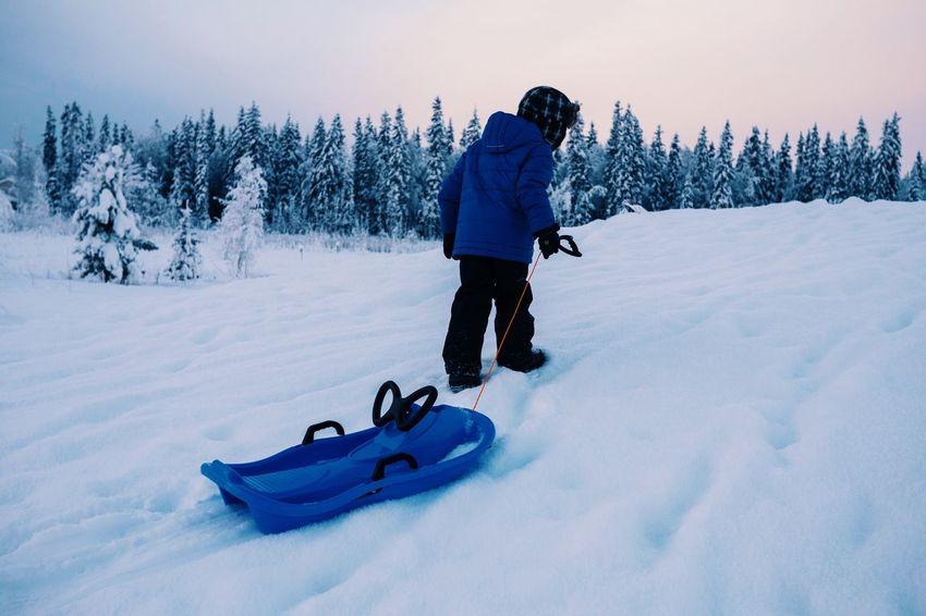 Snowsled Fairbanks Alaska