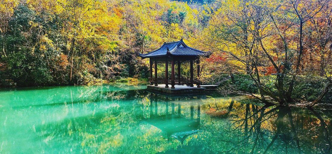 一个适合修炼的地方 Water Nature Tranquil Scene Beauty In Nature Scenics Tree Lake Autumn No People EyeEmNewHere