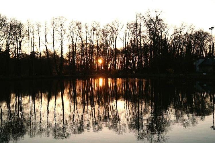 Belle nature. Nature Beautiful Nature Peche Sun Soleil Reveille Matin Avril Paques Froid