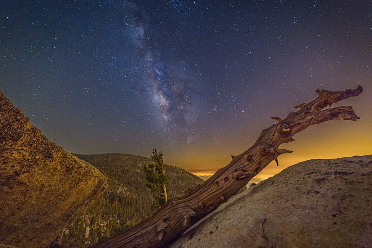 Driftwood on rocks against milky way