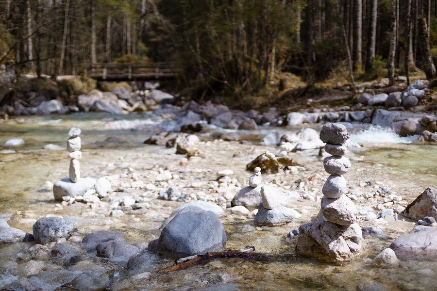 Stream Cairns Flowing Water Forest Idyllic Log Rock Rock - Object Rockstacking Steinmännchen Stone Stone - Object Stone Cairn Stonecairn Stream Towers Tree Tree Trunk Water WoodLand