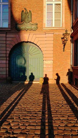 Shadow &