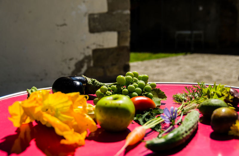 High angle view of vegetables on plate