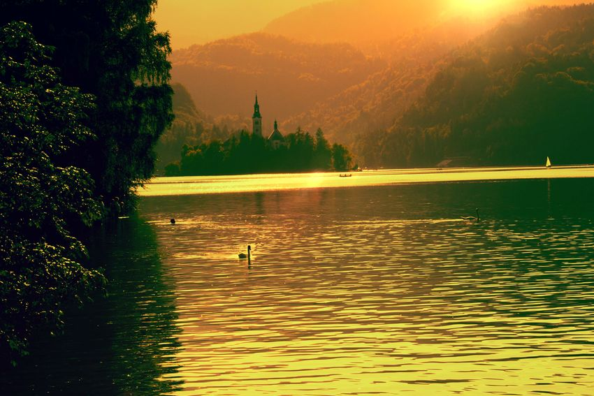 yellow lake Lakeside Lakeshore Sunset Time Calm Placid  Beauty Gold Colored Sunset Nature Gold Silhouette Reflection Lake Yellow Forest Outdoors Mountain Landscape Water Scenics Beauty In Nature
