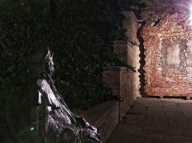 El autor observando. No People Tree Outdoors Night Salamanca Salamanca, Castilla Leon, España Author Obra Poesia Poetry Poem Poet Poeta Noche Dark City City Street Nightphotography Nightshot Night View Nightlights