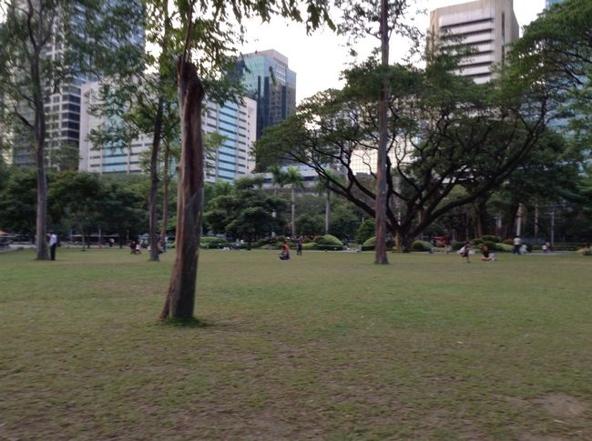 Park in the City. Enjoying Life Mobile Photography Eyeem Philippines Taking Photos