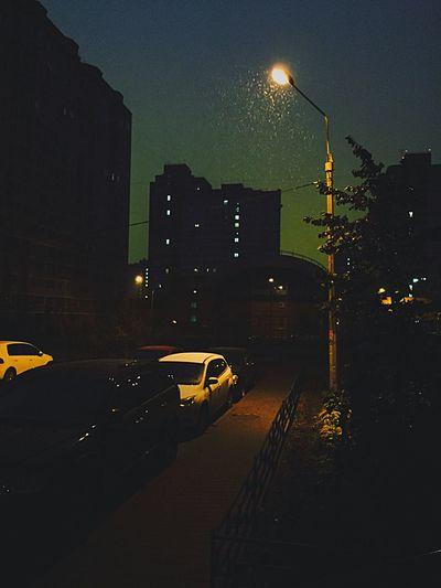 Good morning, world! Snow Autumn Morning