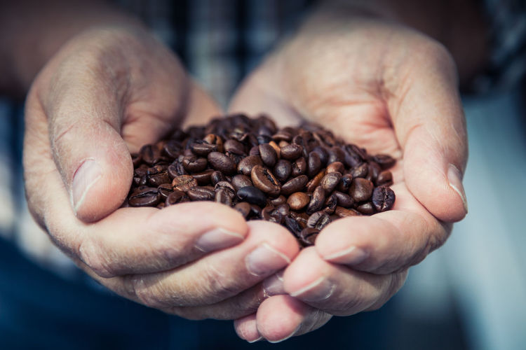 Cropped image of hand holding roasted coffee beans