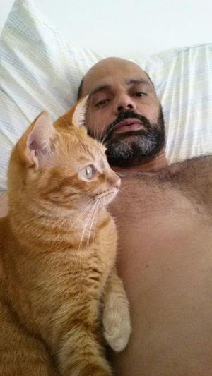 Bed Selfie Cat Lovers Beard