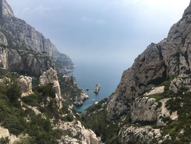 Sea Mediterranean  Landscape_photography Landscape View Nature Photography Nature Calanques De Marseille Sugiton Marseille Cliff Tree Sky Plant Beauty In Nature Nature Tranquility Day Water Scenics - Nature Tranquil Scene Cloud - Sky Land