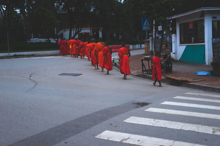 ALMS Luang Prabang, Laos Alms Giving Alms Giving Ceremony Buddhism Buddhist Monks Buddhist Temple Laos Laos Buddhis Laos Street Laos Street Photo Laos Street Photography Laos Street Scene Line Of Monks Luang Prabang Monks Monks Walk Monks Wearing Orange Robes Orange Robes Roadside Roadsidephotography Street Photography Street Scene