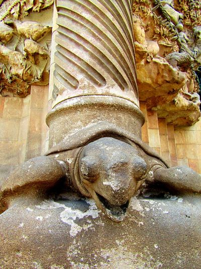 Rock Turtle Details Monument Sagradafamiliabarcelona Sagradafamilia Old Oldbuildings Barcelona SPAIN SagradadeFamilia Buildingphotography Architecturephotography Eye4photography  Eyeemcollection Fine Art Photography From My Point Of View Abstract Animalphotography Hello World Art