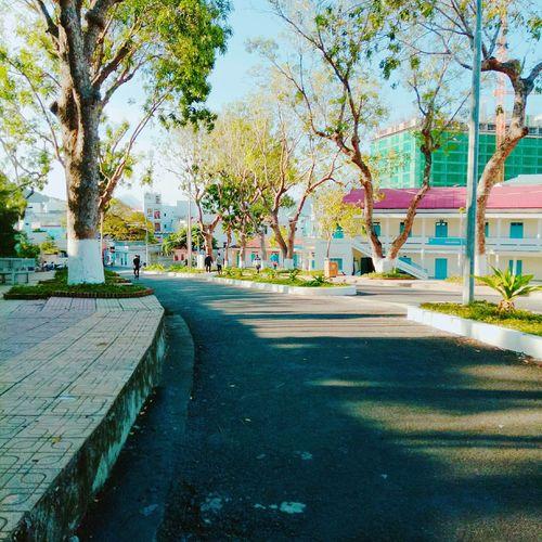A corner of my school School