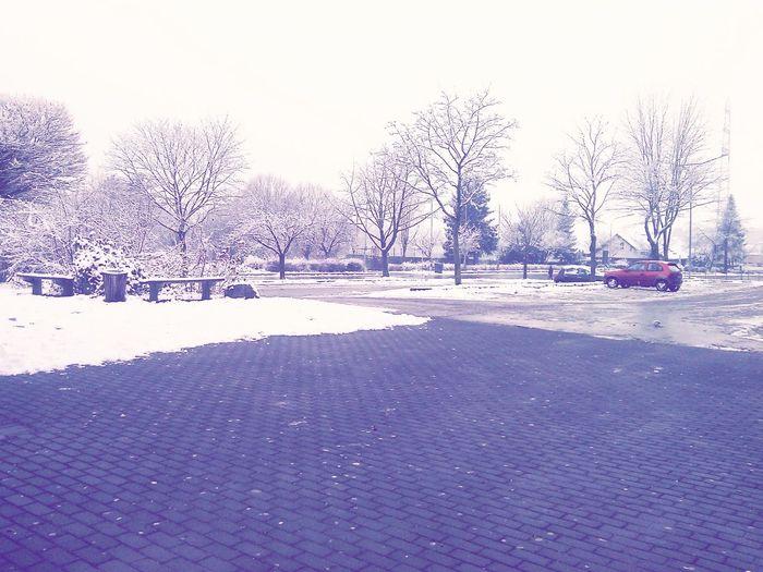 Snow*--*