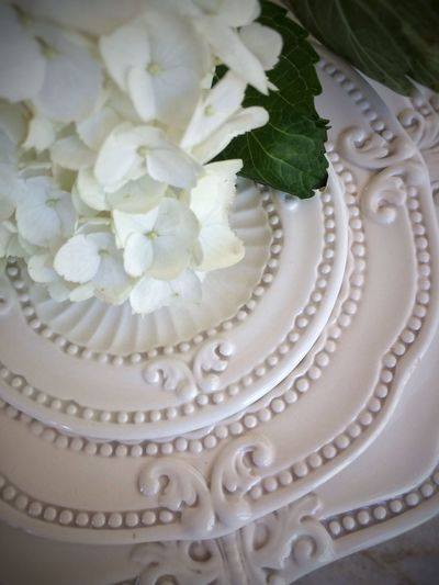 Hybiscus IPS2016White Pattern Place Setting Still Life Table White Color