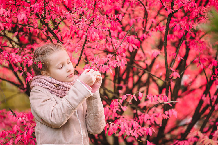 Low angle view of woman holding pink flower by tree