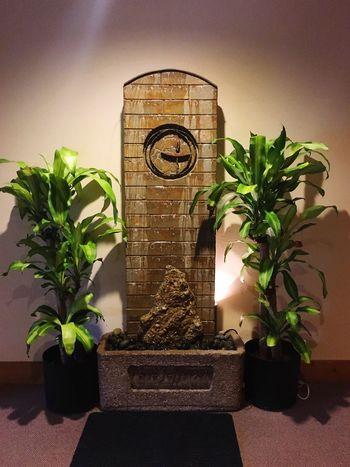 Unitarian Alter Flows Luvsuncat Hanging Out Spirituality Spiritualism✨ Faith Water Plants 🌱 Green Color Luvsuncat Libertarianism🕯 Chalice Flames Alternativestyle Alter Flowing Church Flow