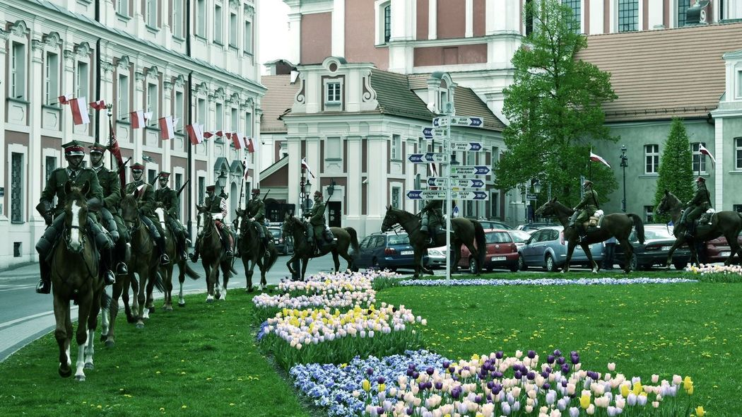 Architecture City Horses Architecture Building Exterior Built Structure Flower Flowers Horse Riding Horses In City Lancer Large Group Of People Unform