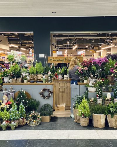 Potted plants at store