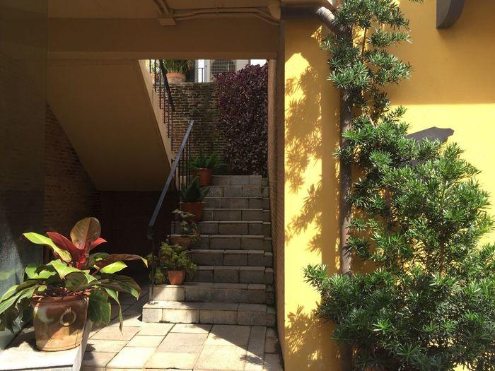 Architecture Architecture Built Structure Building Exterior Outdoors Stairs Stairways Stairway Stairs_steps