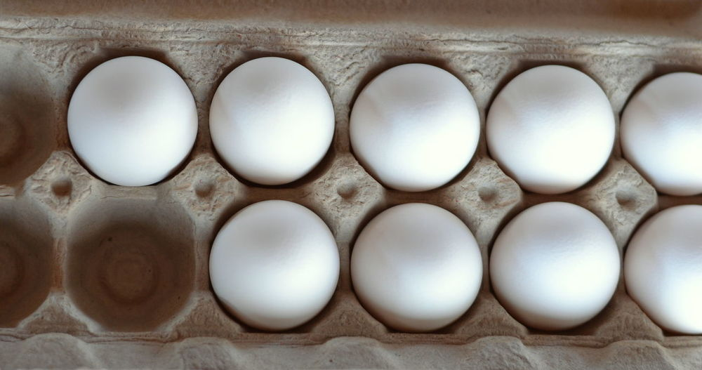 White Whole Eggs in a Cardboard Egg Carton Abundance Breakfast Chicken Eggs Close-up Egg Egg Carton Egg Shells Eggs Eight Food Group Of Objects In A Row Line-up My Favorite Breakfast Moment Nine No People Oval Ovals Peaceful Repetition Serene Side By Side Still Life White Eggs Whole Egg
