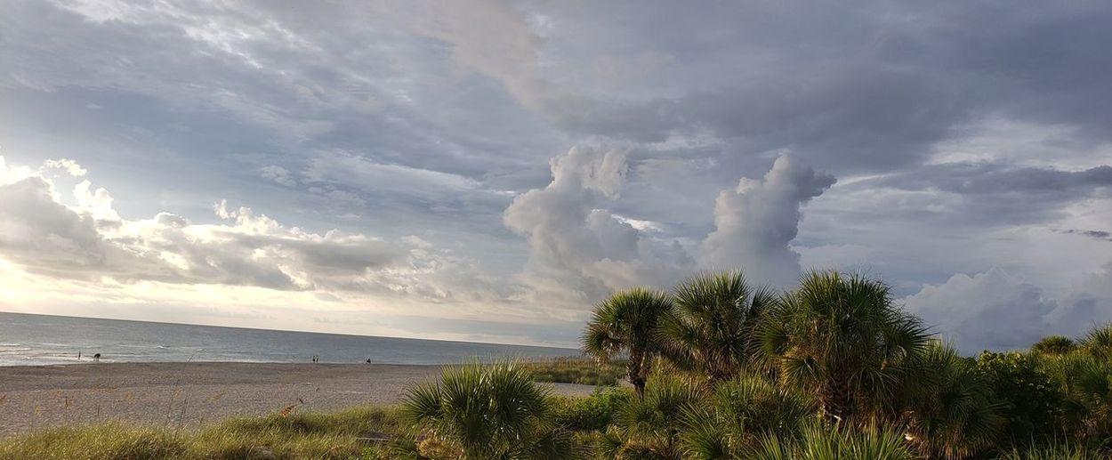 Cloudscape Over