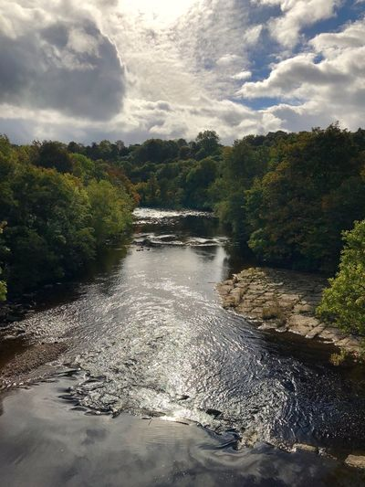 River Swale Richmond Copy Space Autumn Leaves Autumn colors Autumn River Swale Cloud - Sky Sky Water Tree Plant Nature No People Beauty In Nature Scenics - Nature Tranquil Scene Tranquility Outdoors Sunlight Day Land