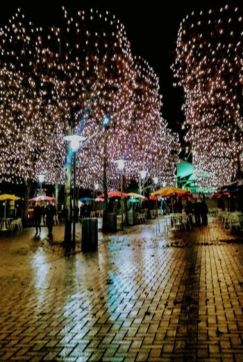 Crown Center Plaza, Kansas City, MO Illuminated Night View Historical Building Eyeem Photography EyeEm Gallery Christmastime 🌲 Building Exterior City Irwin Collection Illumination EyeEm Best Shots Outdoors Christmas Lights Wintertime Real People Kansas City Outdoor Photography Eyem Gallery Irwin Collection