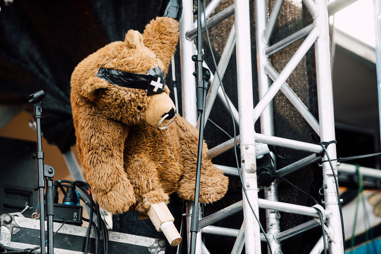 Bear Concert Photography FUNNY ANIMALS On Stage One Eyed Pirate Pirates Teddybear Toys Long Goodbye