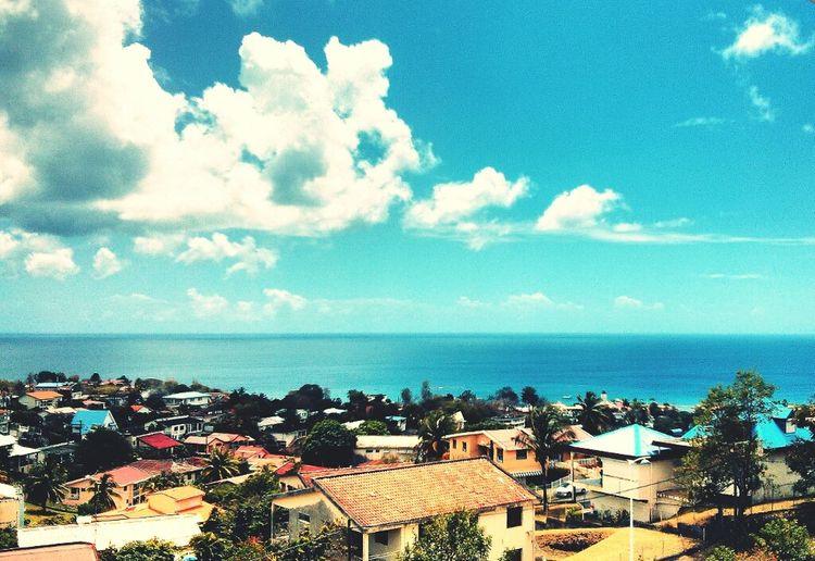 Landscape Martinique