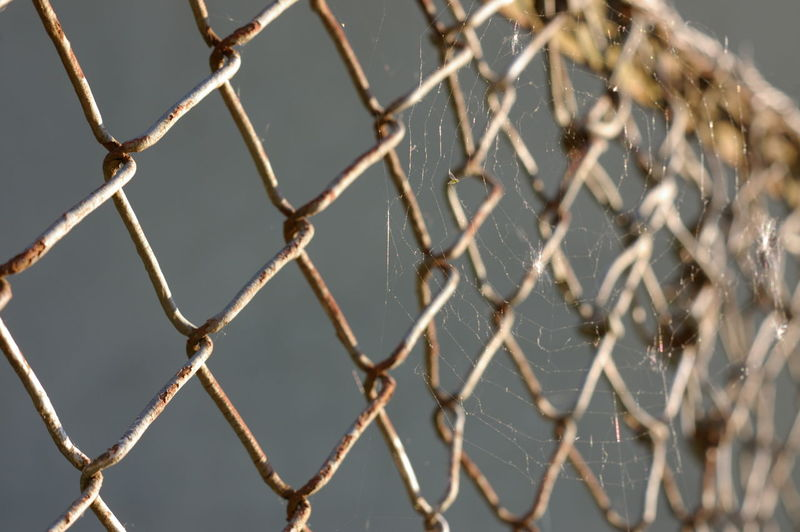 Rust Security Textured  Backgrounds Barrier Boundary Chainlink Fence Close-up Crisscross Detail Detailphotography Details Textures And Shapes Fence Focus On Foreground Full Frame Metal Pattern Protection Rusted Rusty Rusty Metal Selective Focus Spiderweb Sunlight Web EyeEmNewHere