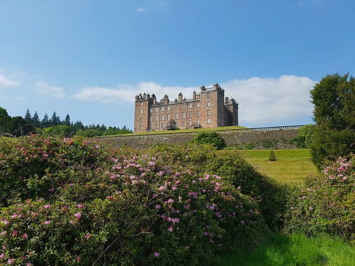 Taking Photos Dumfrieshire Drumlanrig Beautiful Beautiful Day Scotland Scotland 💕 Drumlanrig Castle Drumlanrig Flowers, Nature And Beauty Summershots Summertime Summer Views Summer ☀ Summer 2016 Castles Landscape_Collection Landscape_photography Landscape_photography Landscape Landscapes Landmarks Landscape_lovers Landmarkbuildings Taking Pictures